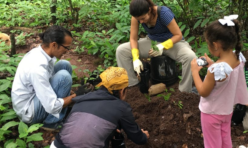 Planting the tree of life in the Reserve… the magic Guáimaro